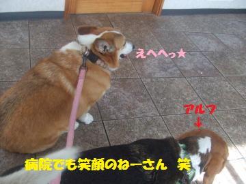 014_convert_20120520031149.jpg