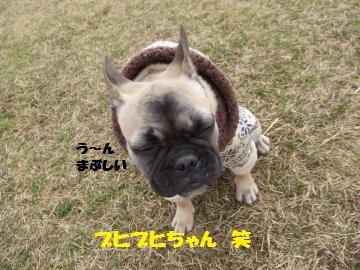 015_convert_20120222013615.jpg