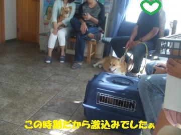015_convert_20120520031047.jpg