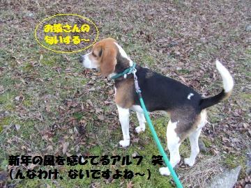 016_convert_20120104224913.jpg