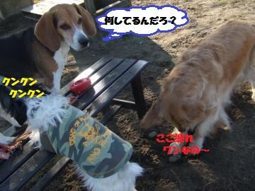 017_convert_20120210004812.jpg
