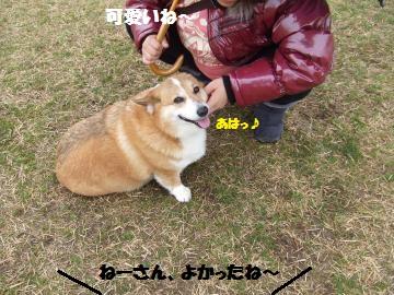 017_convert_20120306014129.jpg