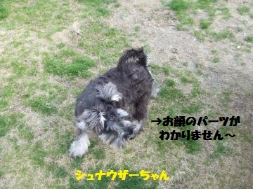 017_convert_20120312235827.jpg