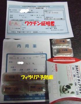018_convert_20111114224434_convert_20111114225524.jpg