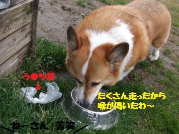 018_convert_20120321235654.jpg