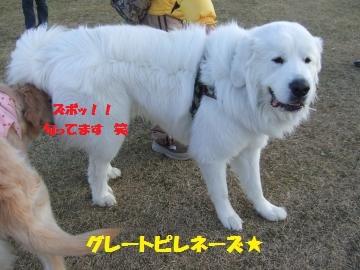 019_convert_20120213224921.jpg