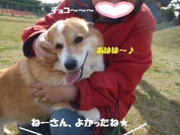 019_convert_20120331012822.jpg