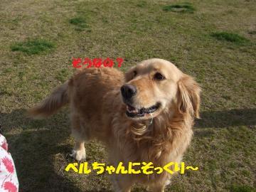 021_convert_20120331013023.jpg