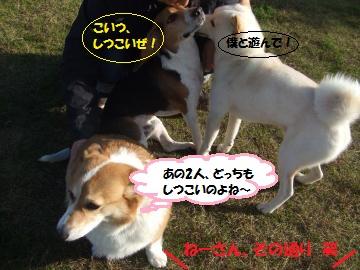 022_convert_20111208235225.jpg