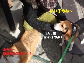 022_convert_20120226224724.jpg