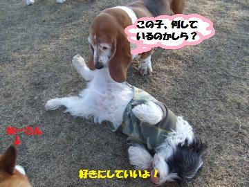 023_convert_20120210004942.jpg