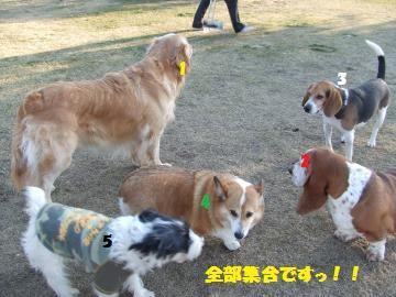 024_convert_20120210005031.jpg