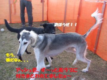 024_convert_20120213225013.jpg