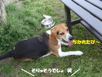 025_convert_20120418004046.jpg