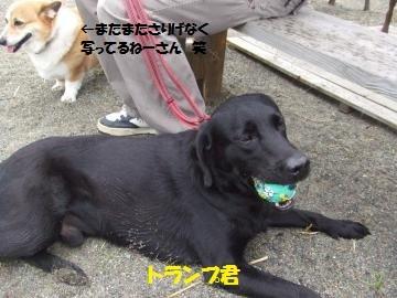 026_convert_20111030210147.jpg
