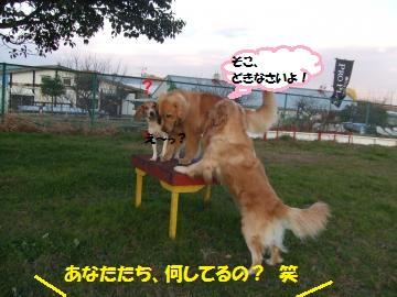 026_convert_20111216234019.jpg