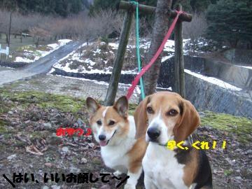 027_convert_20120104225145.jpg