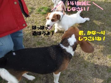 027_convert_20120331013407.jpg