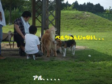 027_convert_20120716220807.jpg