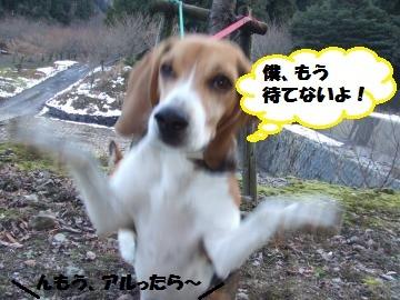028_convert_20120104225234.jpg