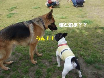 031_convert_20120418004854.jpg