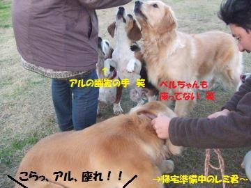 032_convert_20111216234256.jpg