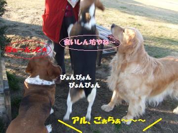 032_convert_20120210005403.jpg