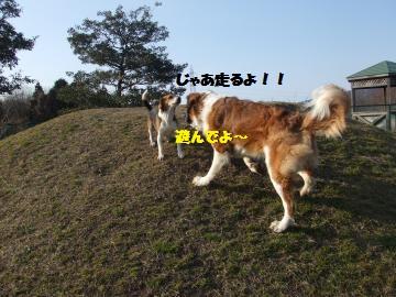 033_convert_20120123000142.jpg