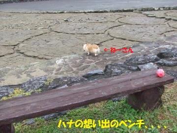 034_convert_20111106230310.jpg