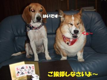 034_convert_20120101052445.jpg