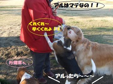 034_convert_20120210005621.jpg