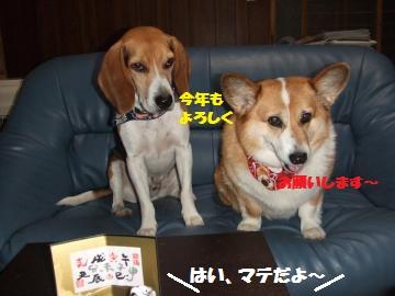 035_convert_20120101052704.jpg