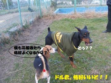 036_convert_20111224040340.jpg