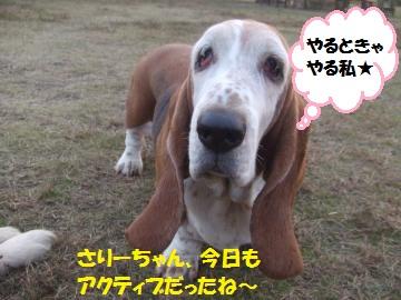 037_convert_20111130005537.jpg