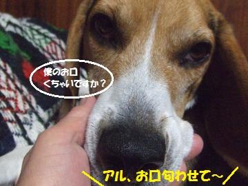 037_convert_20111213010035.jpg