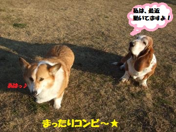 037_convert_20120210005152.jpg