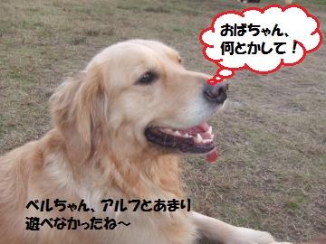 038_convert_20111130005627.jpg