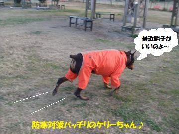 039_convert_20111224040425.jpg