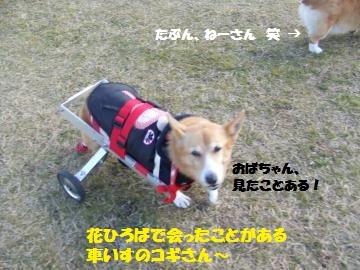 039_convert_20120213225131.jpg