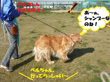 040_convert_20120412234147.jpg