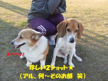 042_convert_20111227235754.jpg