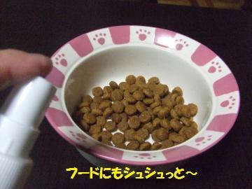 043_convert_20111112013409.jpg