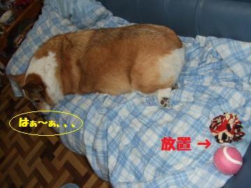 043_convert_20120126224426.jpg