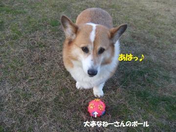 044_convert_20111224040513.jpg