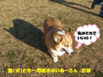 044_convert_20120202033459.jpg