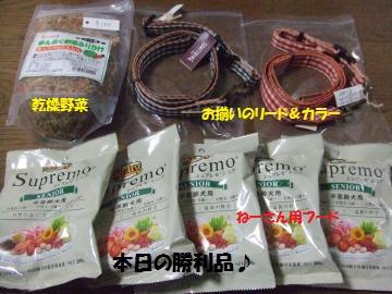 045_convert_20111030210636.jpg