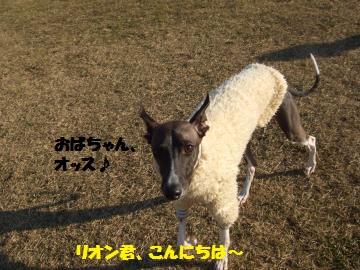 045_convert_20120202034345.jpg