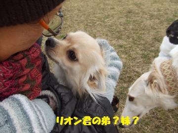 046_convert_20120228231220.jpg