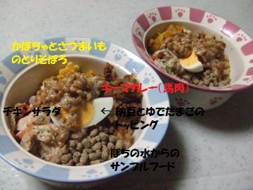 048_convert_20111106225013.jpg