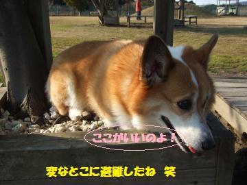049_convert_20120123001310.jpg
